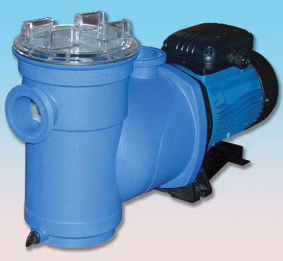 Argonaut Av150 2dn S Swimming Pool Pump